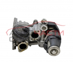 EGR  VW Golf 6 1.6 TDI 105 конски сили 117255.04